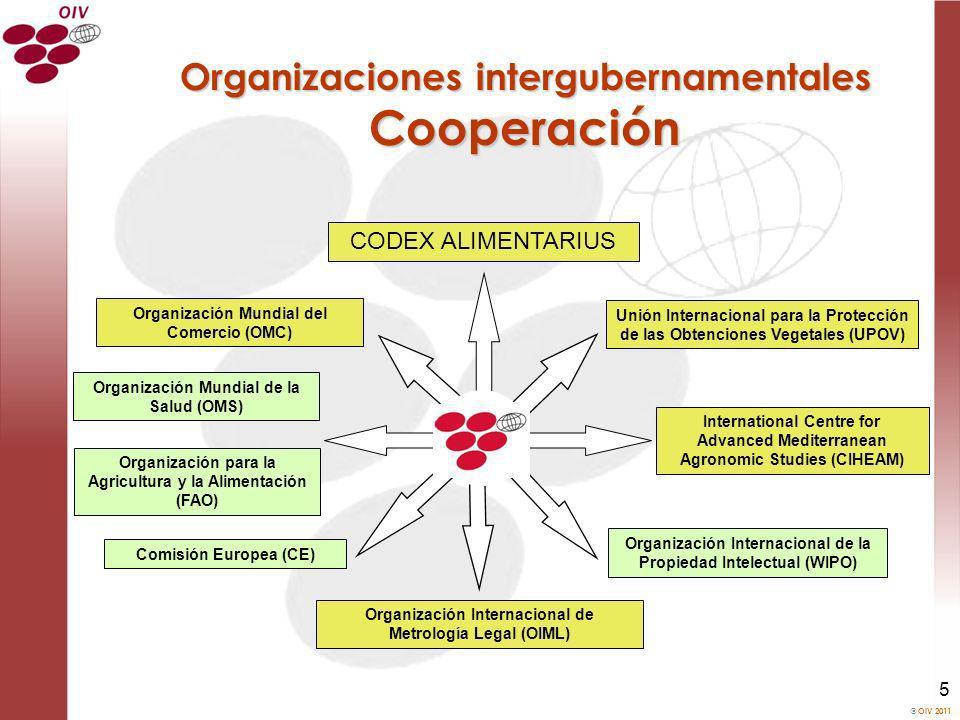Organizaciones intergubernamentales Cooperación