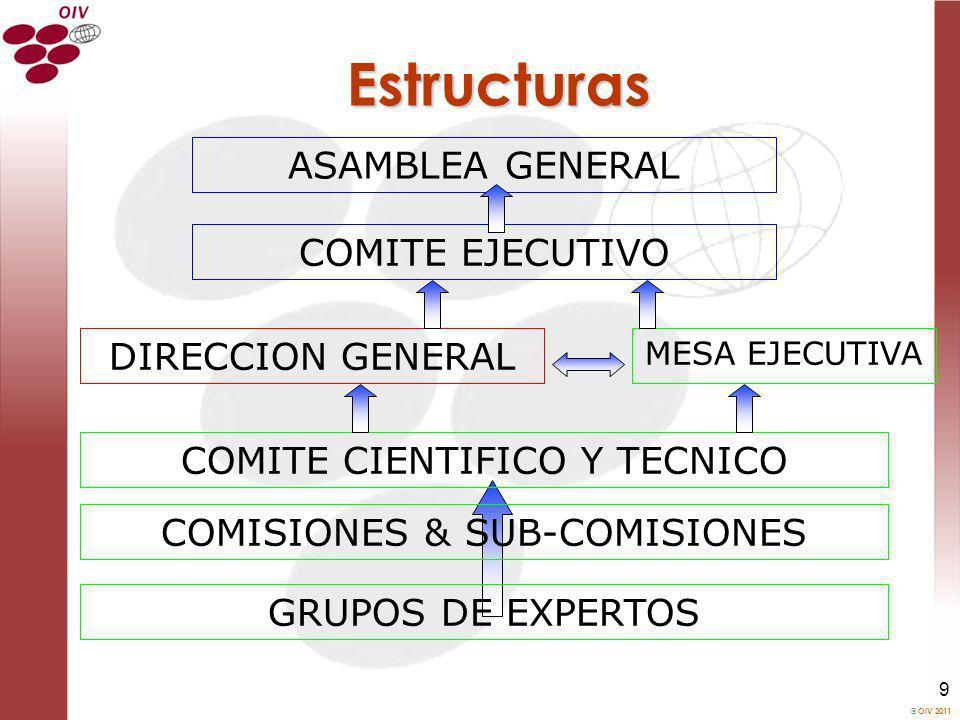 Estructuras ASAMBLEA GENERAL COMITE EJECUTIVO DIRECCION GENERAL