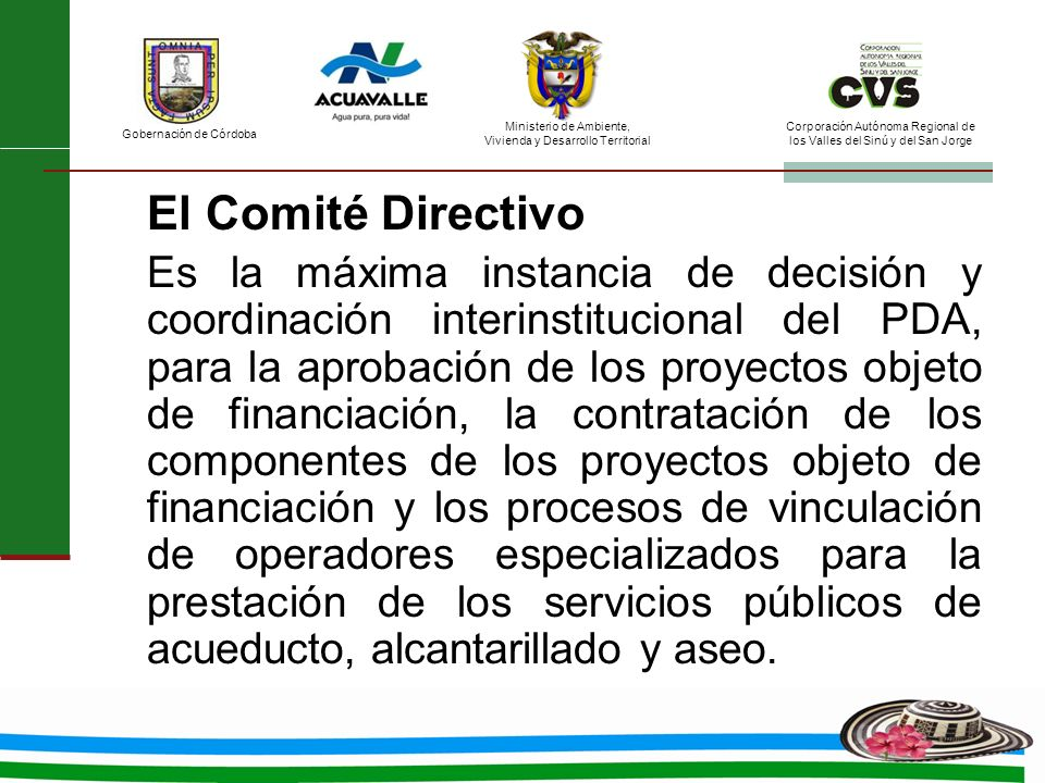 El Comité Directivo