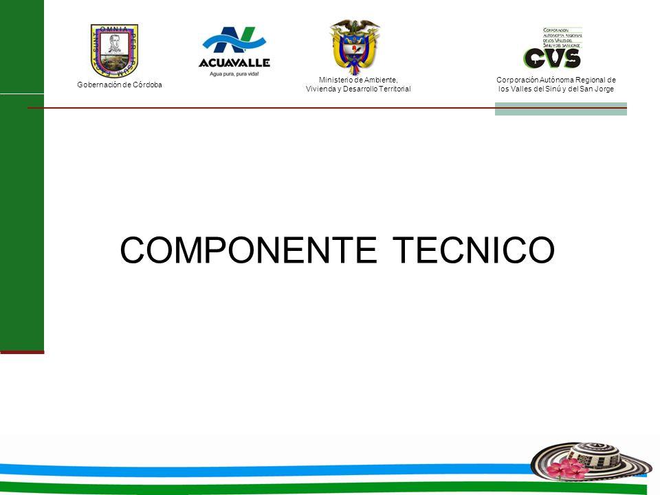COMPONENTE TECNICO