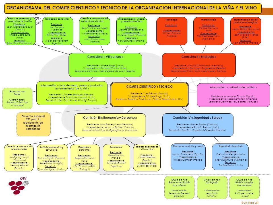 ORGANIGRAMA DEL COMITE CIENTIFICO Y TECNICO DE LA ORGANIZACION INTERNACIONAL DE LA VIÑA Y EL VINO