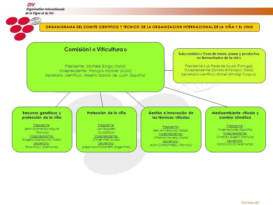 Comisión I « Viticultura »