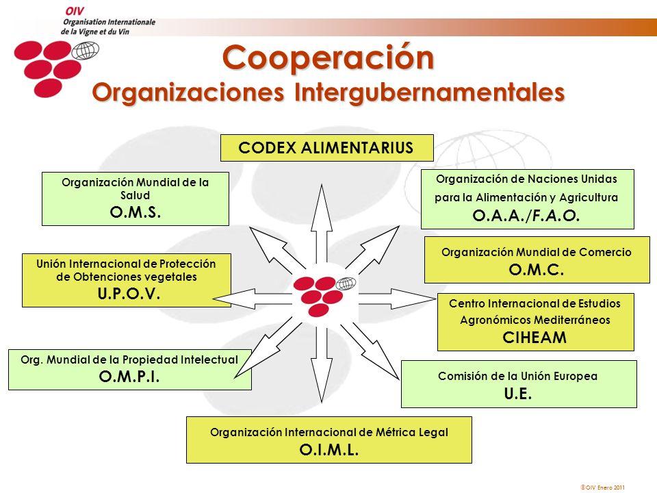 Cooperación Organizaciones Intergubernamentales