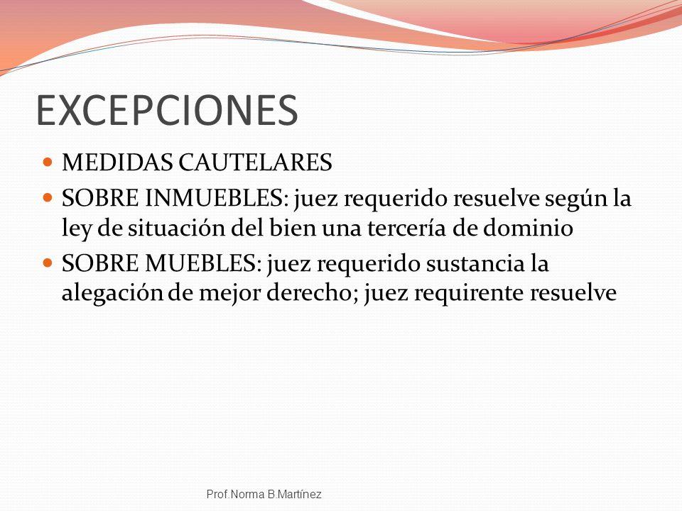 EXCEPCIONES MEDIDAS CAUTELARES