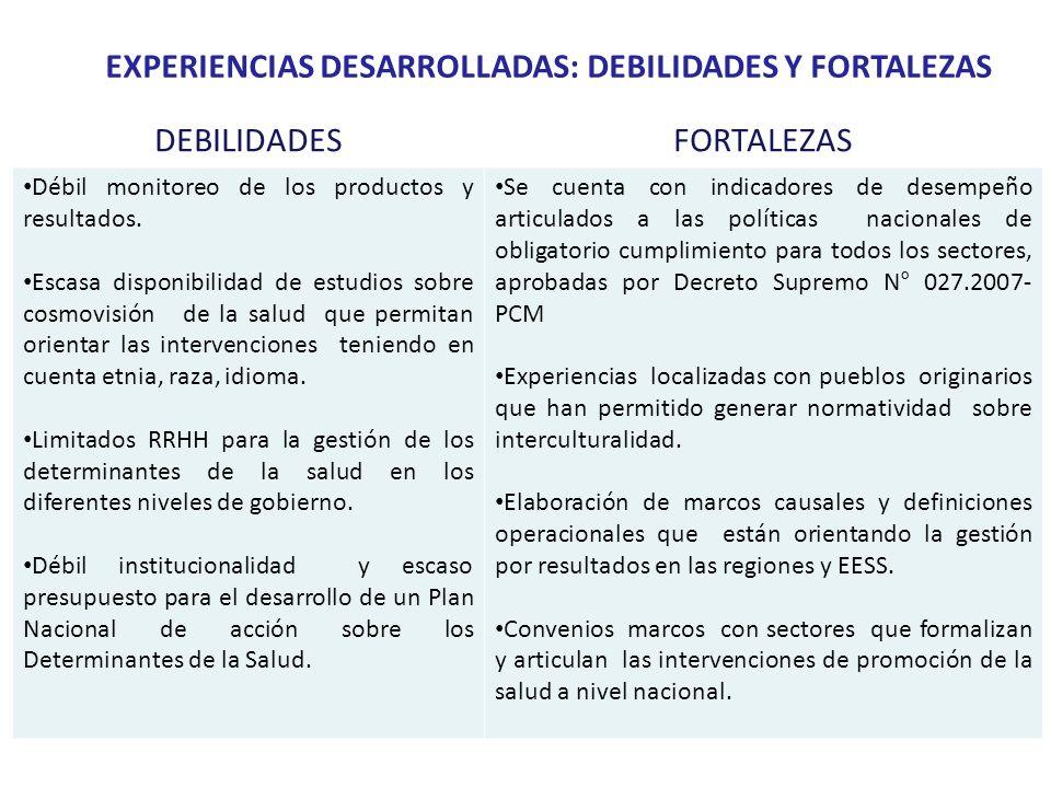 EXPERIENCIAS DESARROLLADAS: DEBILIDADES Y FORTALEZAS