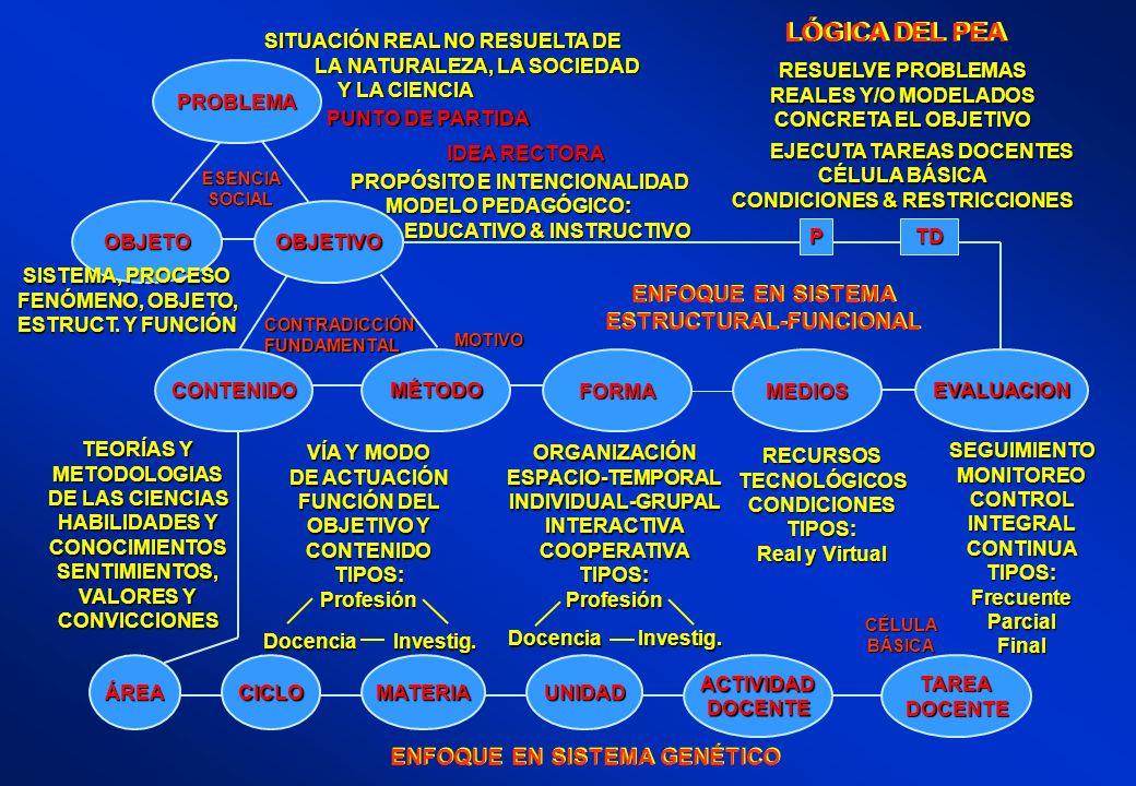 LÓGICA DEL PEA ENFOQUE EN SISTEMA ESTRUCTURAL-FUNCIONAL