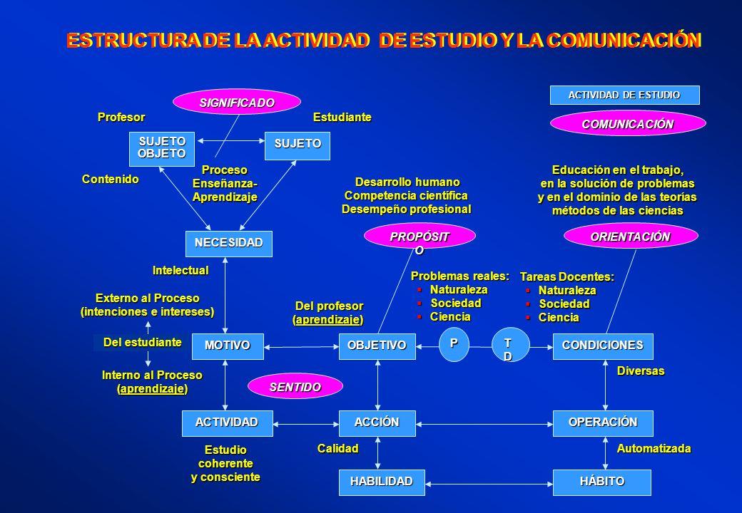 ESTRUCTURA DE LA ACTIVIDAD DE ESTUDIO Y LA COMUNICACIÓN