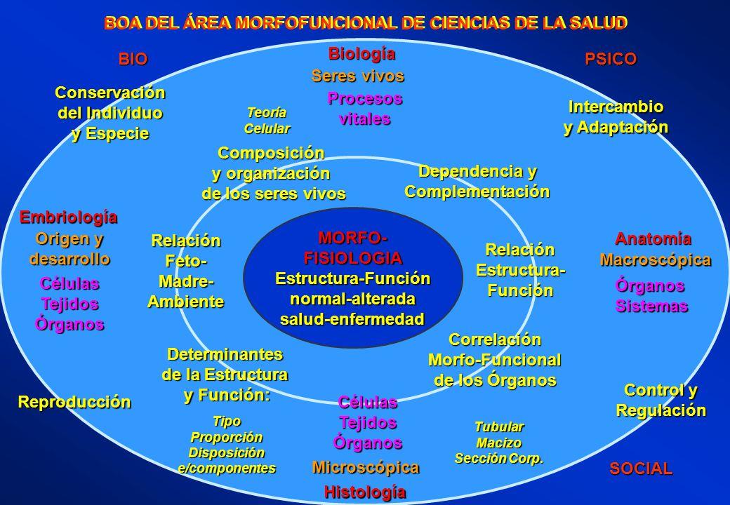 BOA DEL ÁREA MORFOFUNCIONAL DE CIENCIAS DE LA SALUD