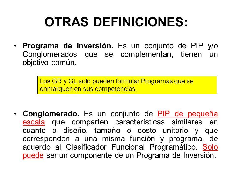 OTRAS DEFINICIONES: Programa de Inversión. Es un conjunto de PIP y/o Conglomerados que se complementan, tienen un objetivo común.