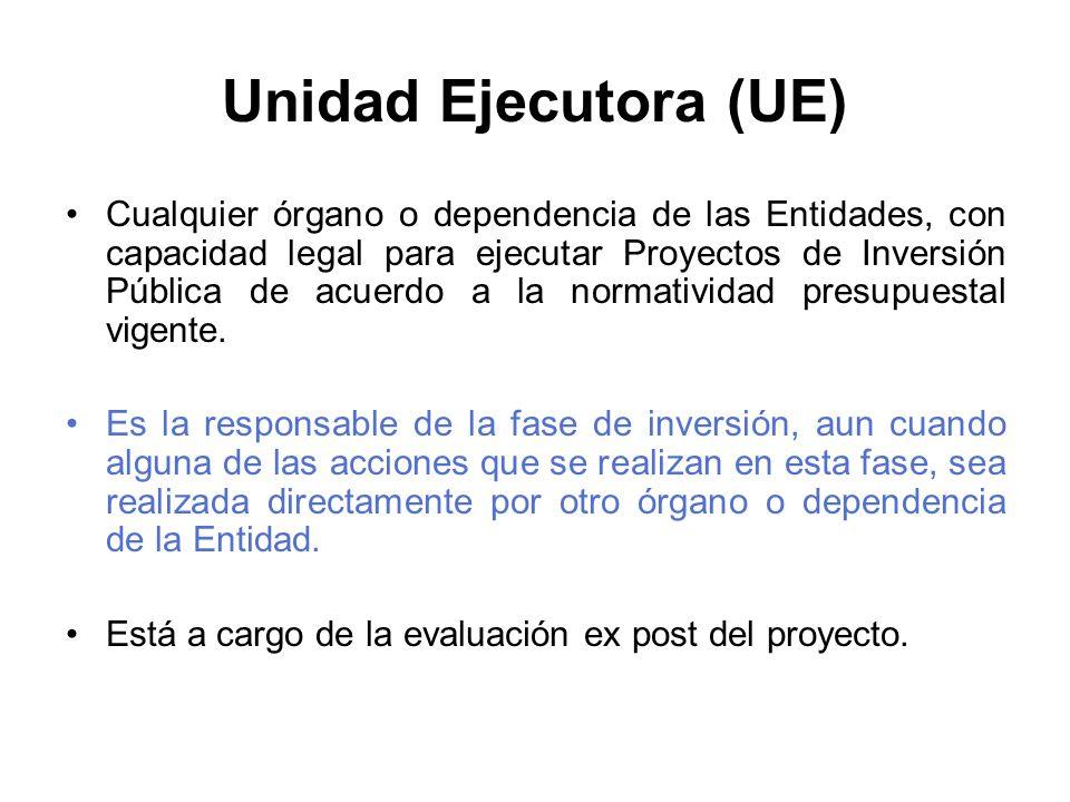 Unidad Ejecutora (UE)
