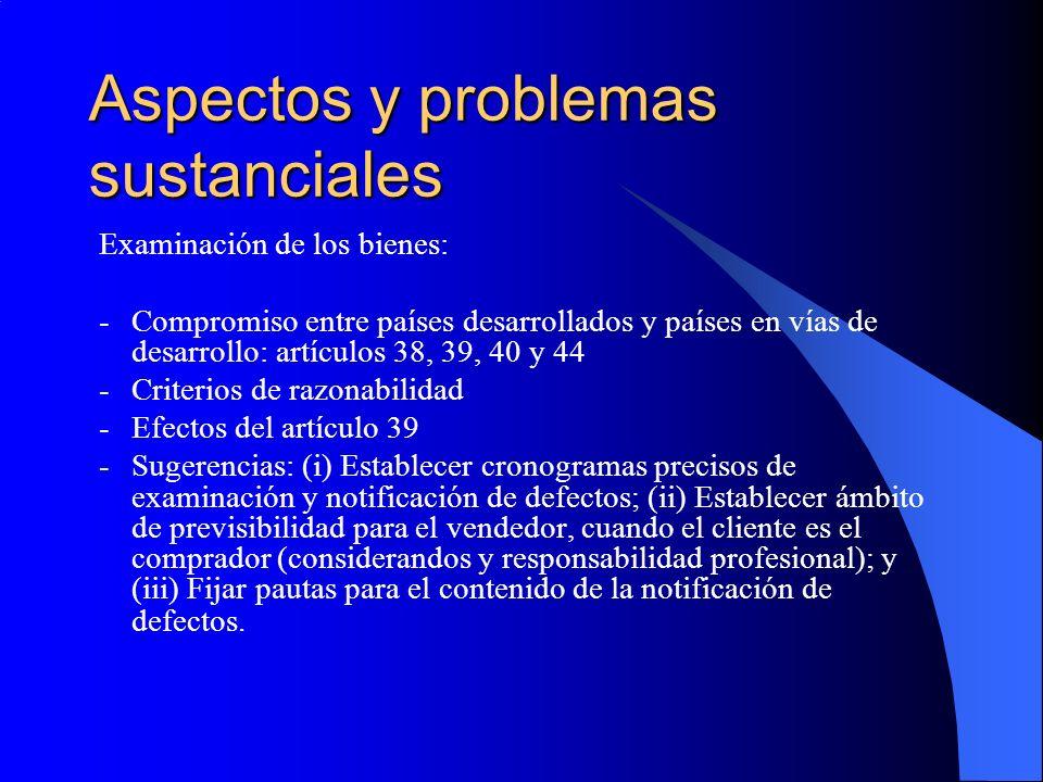 Aspectos y problemas sustanciales