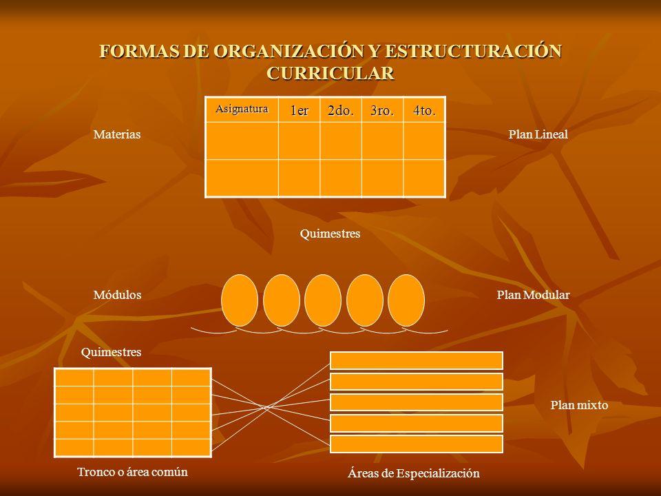 FORMAS DE ORGANIZACIÓN Y ESTRUCTURACIÓN CURRICULAR