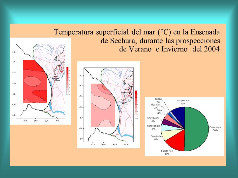 Temperatura superficial del mar (°C) en la Ensenada de Sechura, durante las prospecciones de Verano e Invierno del 2004