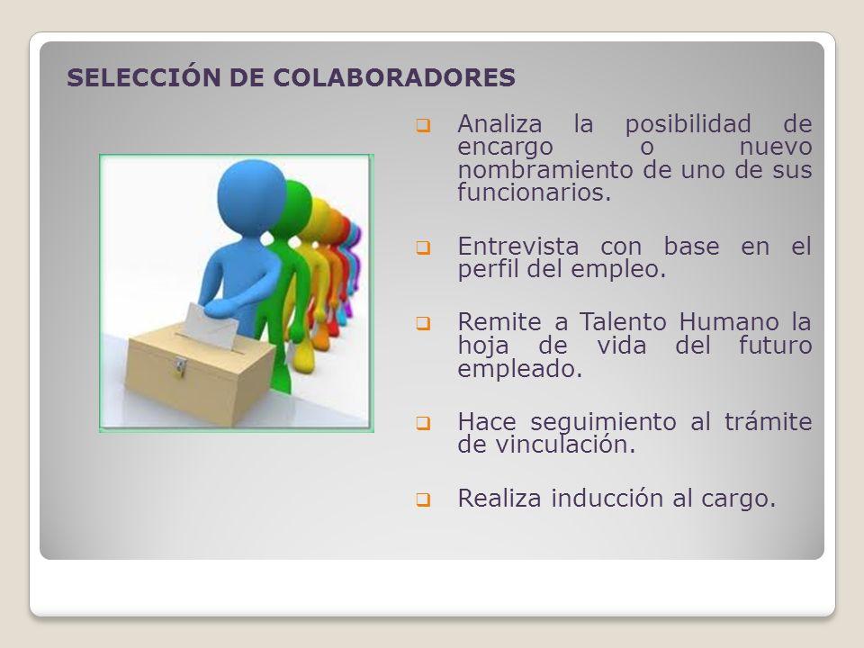 SELECCIÓN DE COLABORADORES