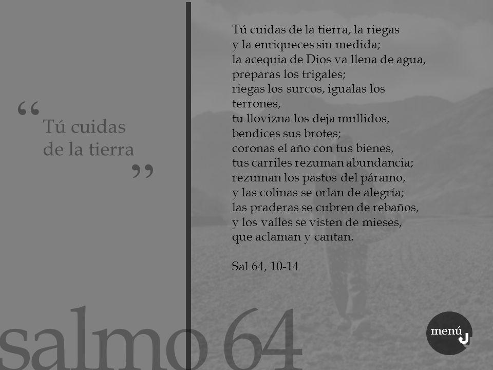 salmo 64 Tú cuidas de la tierra