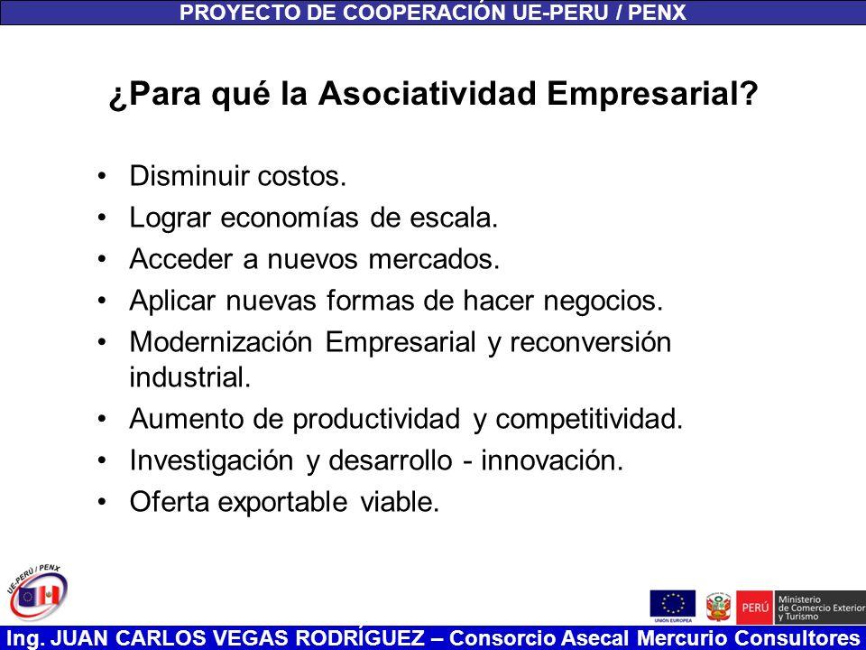 ¿Para qué la Asociatividad Empresarial