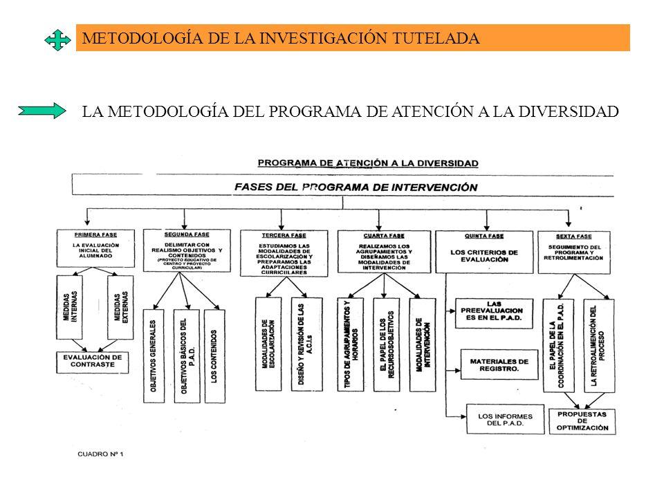 METODOLOGÍA DE LA INVESTIGACIÓN TUTELADA