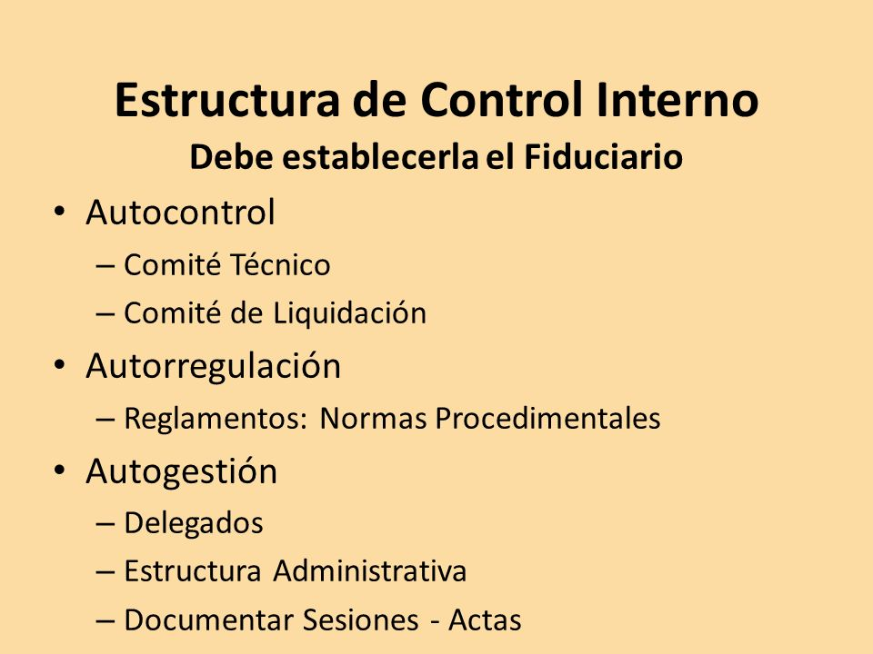 Estructura de Control Interno