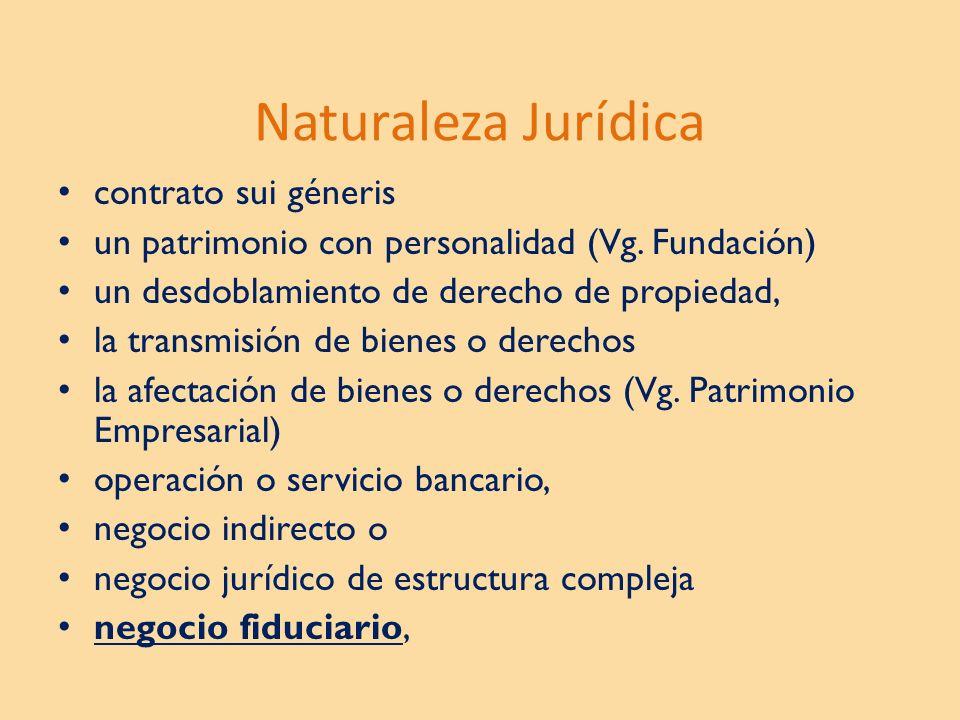 Naturaleza Jurídica contrato sui géneris