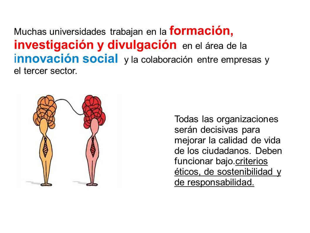 Muchas universidades trabajan en la formación, investigación y divulgación en el área de la innovación social y la colaboración entre empresas y el tercer sector.