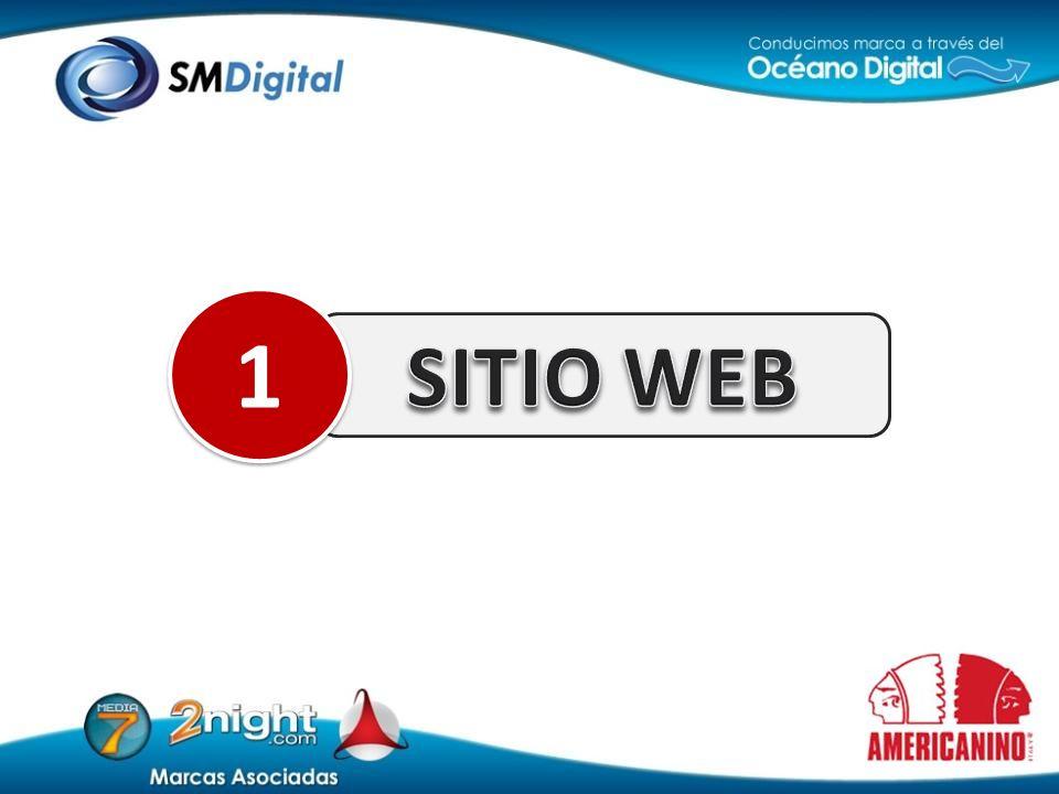 SITIO WEB 1