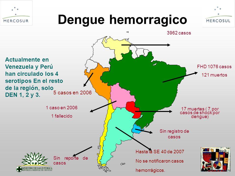 17 muertes ( 7 por casos de shock por dengue)