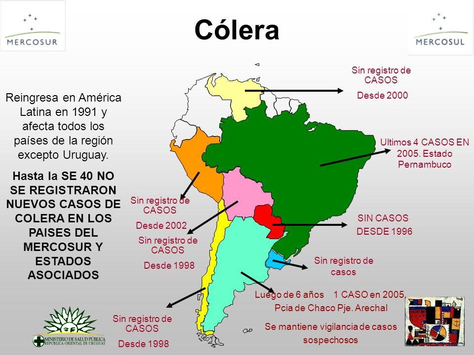 Cólera Sin registro de CASOS. Desde 2000. Reingresa en América Latina en 1991 y afecta todos los países de la región excepto Uruguay.