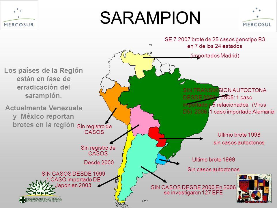 SARAMPION SE 7 2007 brote de 25 casos genotipo B3 en 7 de los 24 estados. (importados Madrid)