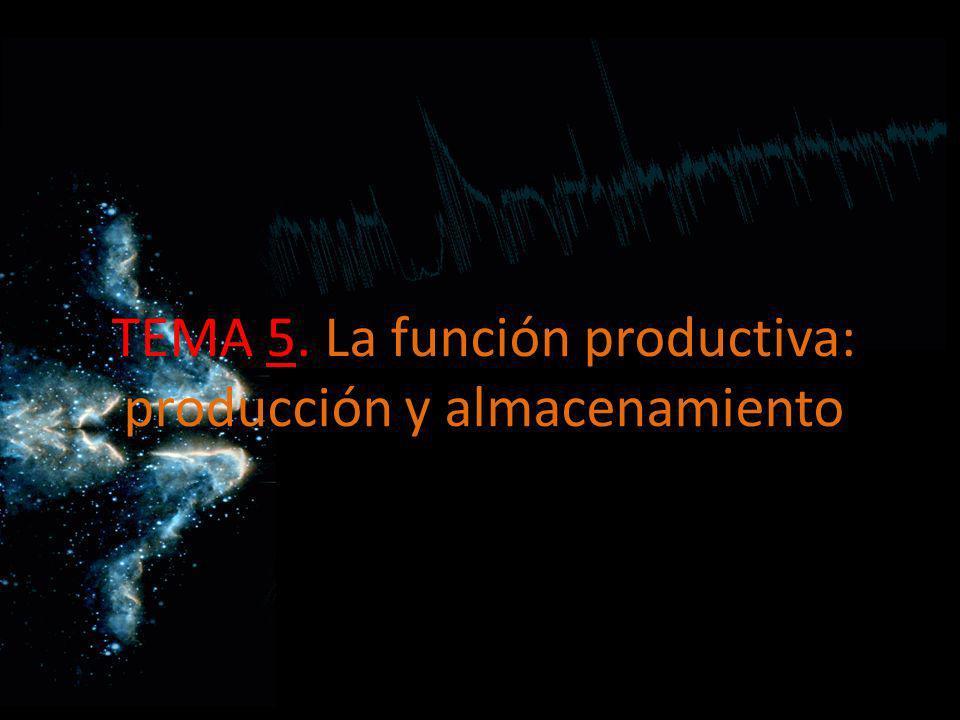 TEMA 5. La función productiva: producción y almacenamiento