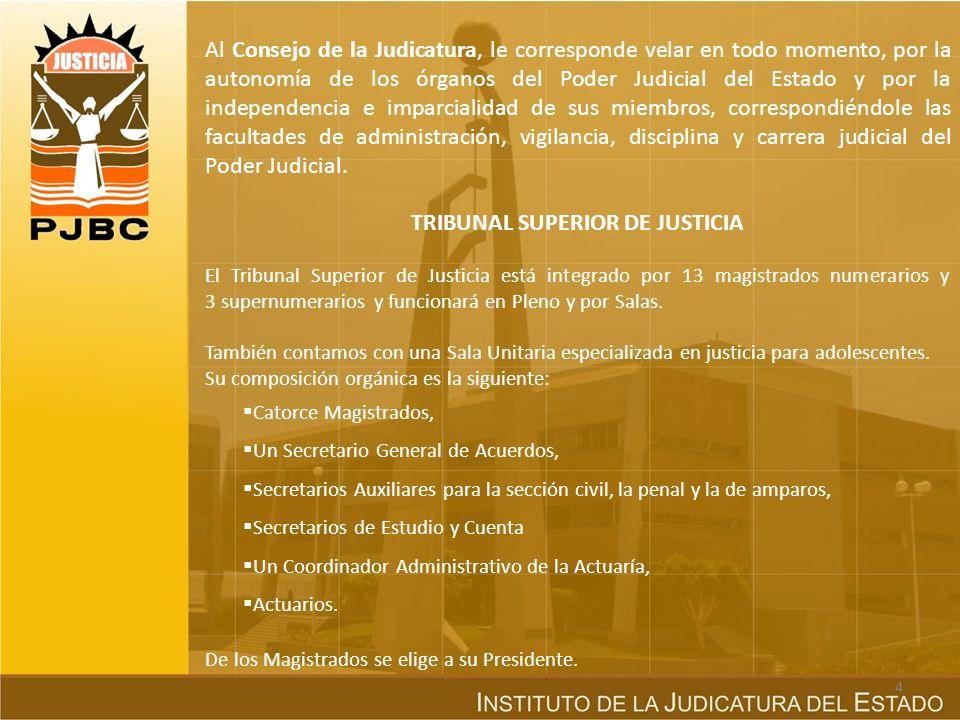 TRIBUNAL SUPERIOR DE JUSTICIA