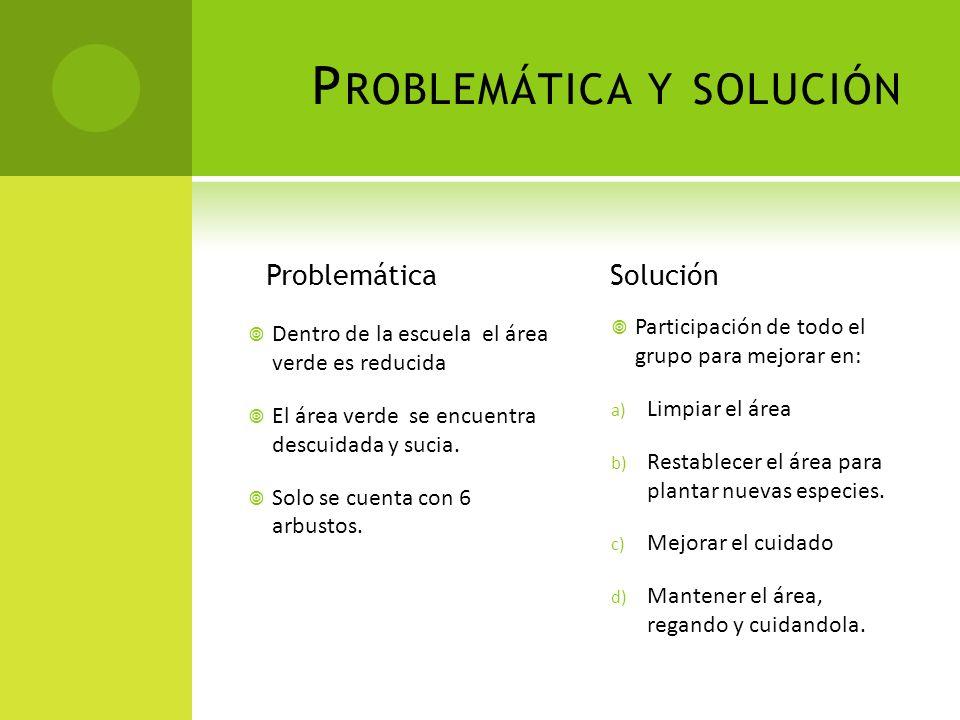 Problemática y solución