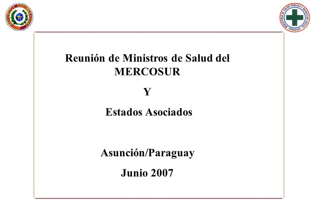 Reunión de Ministros de Salud del MERCOSUR