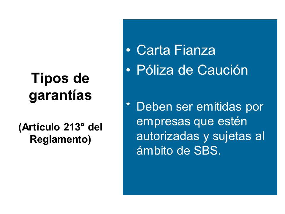 Tipos de garantías (Artículo 213° del Reglamento)