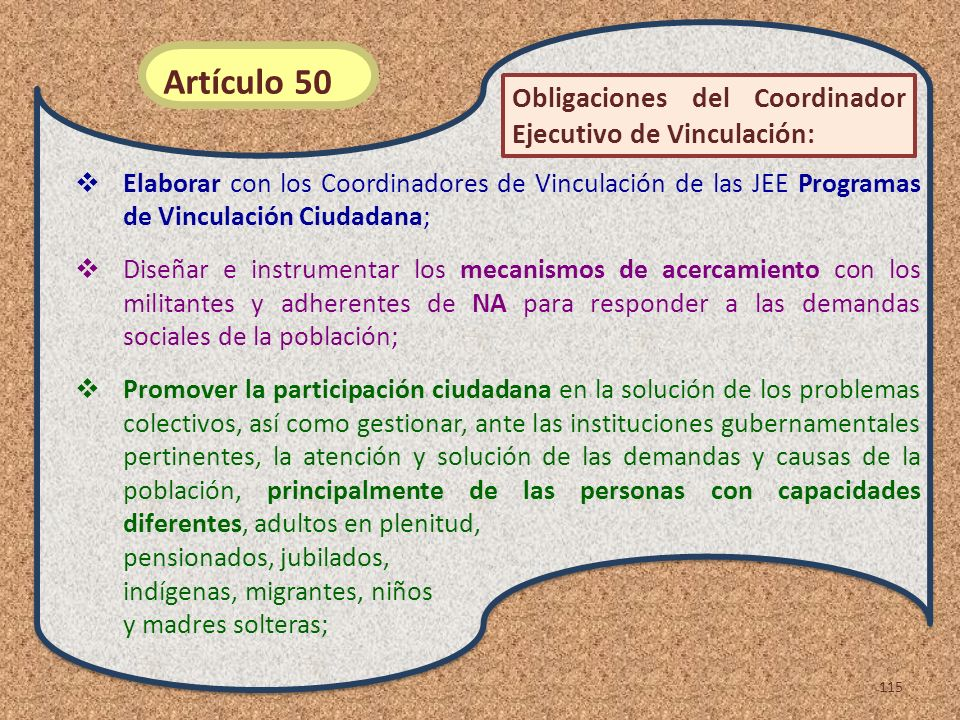 Artículo 50 Obligaciones del Coordinador Ejecutivo de Vinculación: