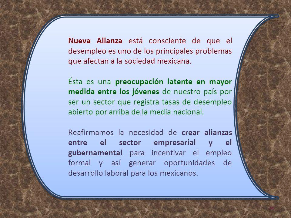 Nueva Alianza está consciente de que el desempleo es uno de los principales problemas que afectan a la sociedad mexicana.
