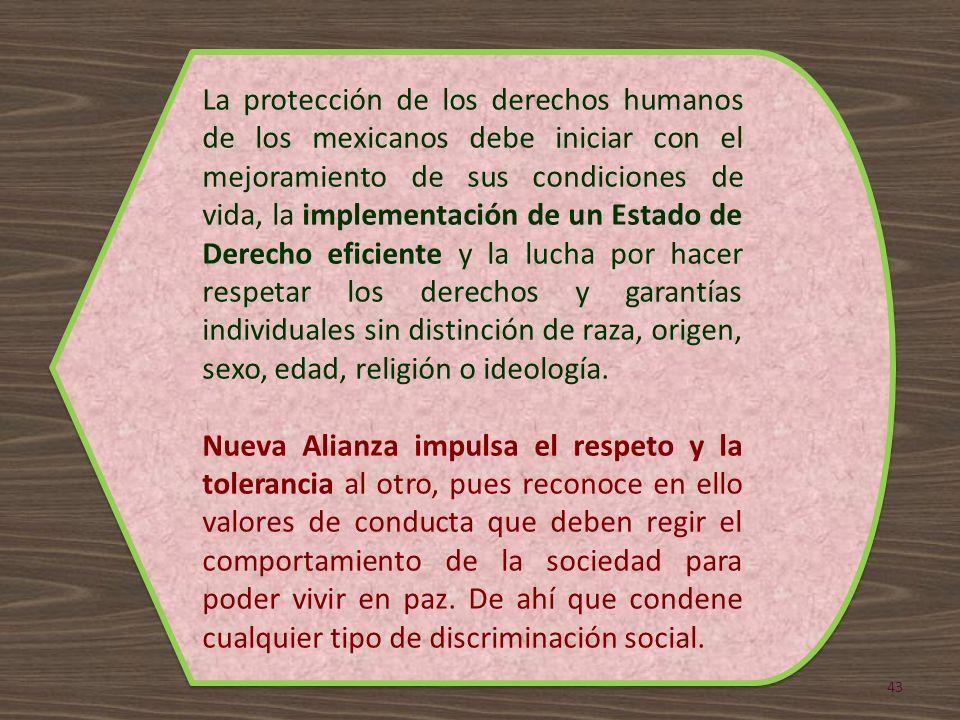 La protección de los derechos humanos de los mexicanos debe iniciar con el mejoramiento de sus condiciones de vida, la implementación de un Estado de Derecho eficiente y la lucha por hacer respetar los derechos y garantías individuales sin distinción de raza, origen, sexo, edad, religión o ideología.