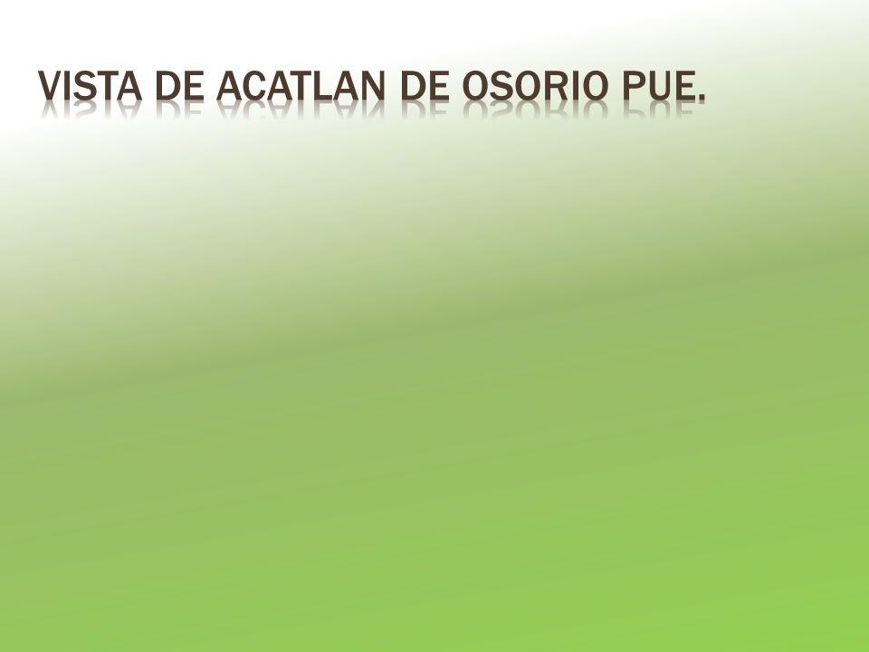 VISTA DE ACATLAN DE OSORIO PUE.