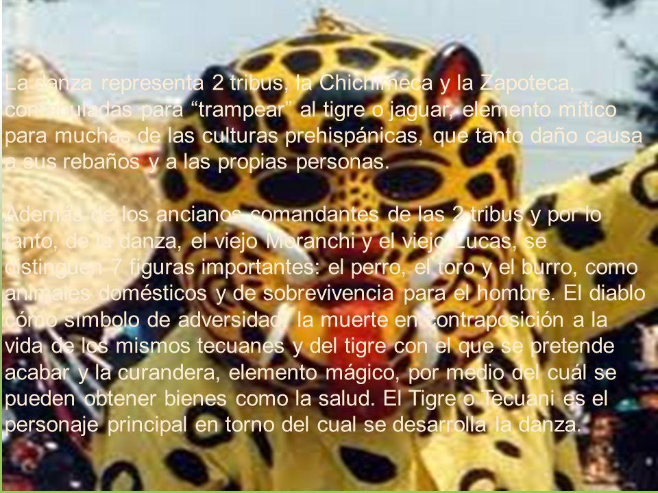 La danza representa 2 tribus, la Chichimeca y la Zapoteca, confabuladas para trampear al tigre o jaguar, elemento mítico para muchas de las culturas prehispánicas, que tanto daño causa a sus rebaños y a las propias personas.