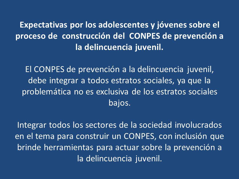 Expectativas por los adolescentes y jóvenes sobre el proceso de construcción del CONPES de prevención a la delincuencia juvenil.