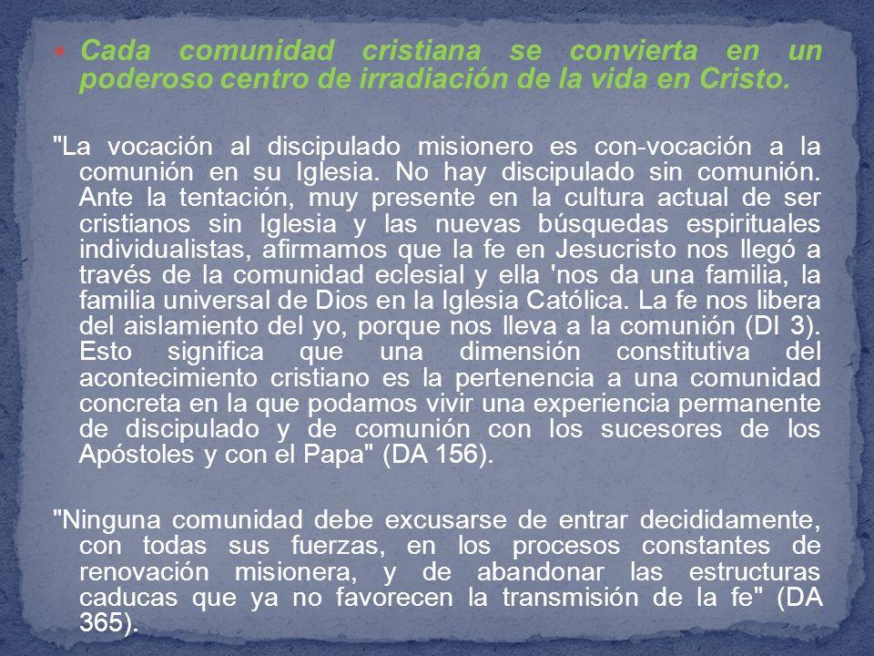 Cada comunidad cristiana se convierta en un poderoso centro de irradiación de la vida en Cristo.