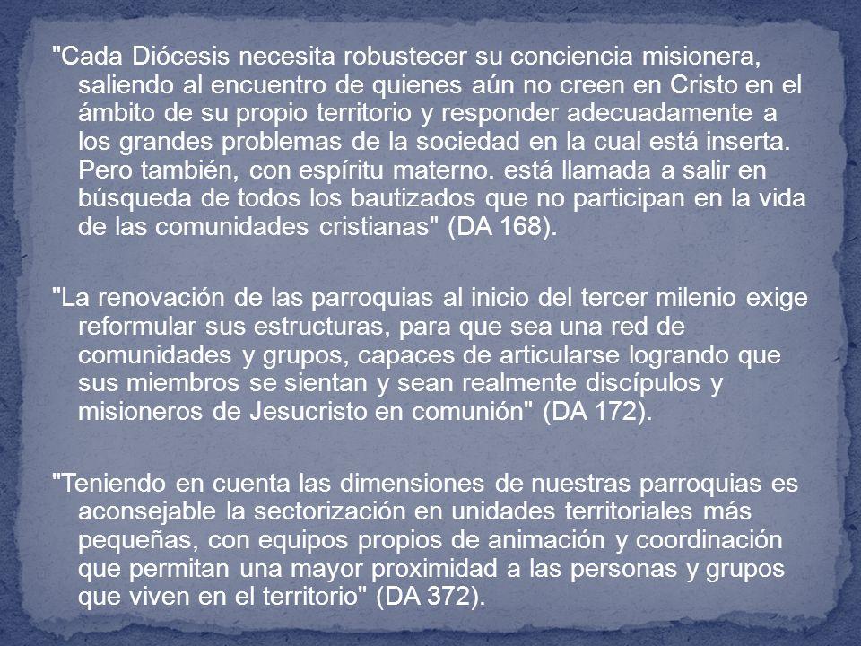Cada Diócesis necesita robustecer su conciencia misionera, saliendo al encuentro de quienes aún no creen en Cristo en el ámbito de su propio territorio y responder adecuadamente a los grandes problemas de la sociedad en la cual está inserta.
