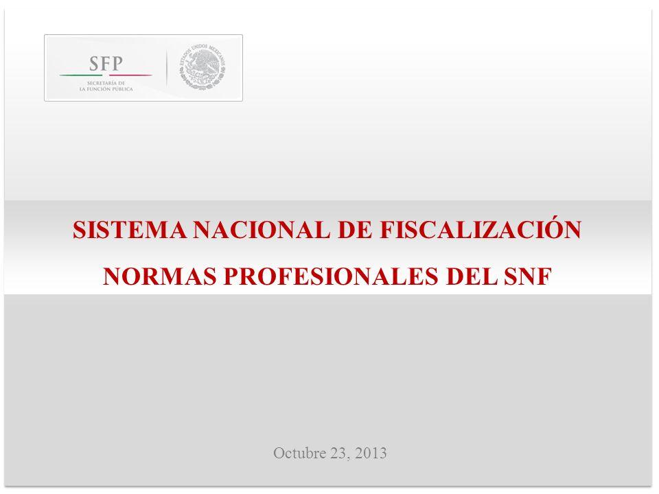 SISTEMA NACIONAL DE FISCALIZACIÓN NORMAS PROFESIONALES DEL SNF