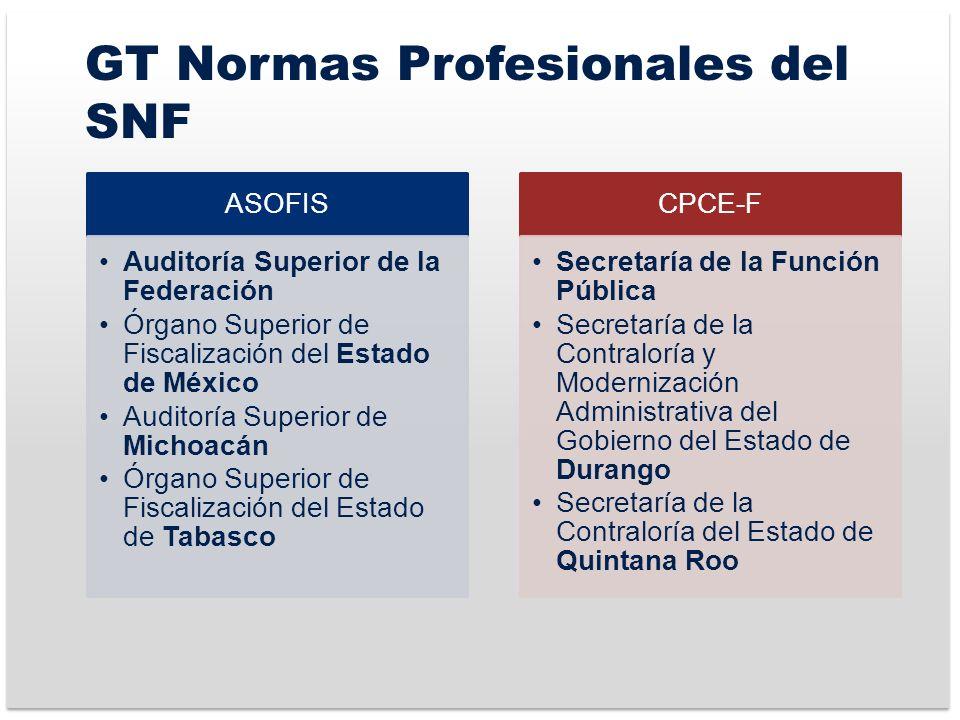 GT Normas Profesionales del SNF