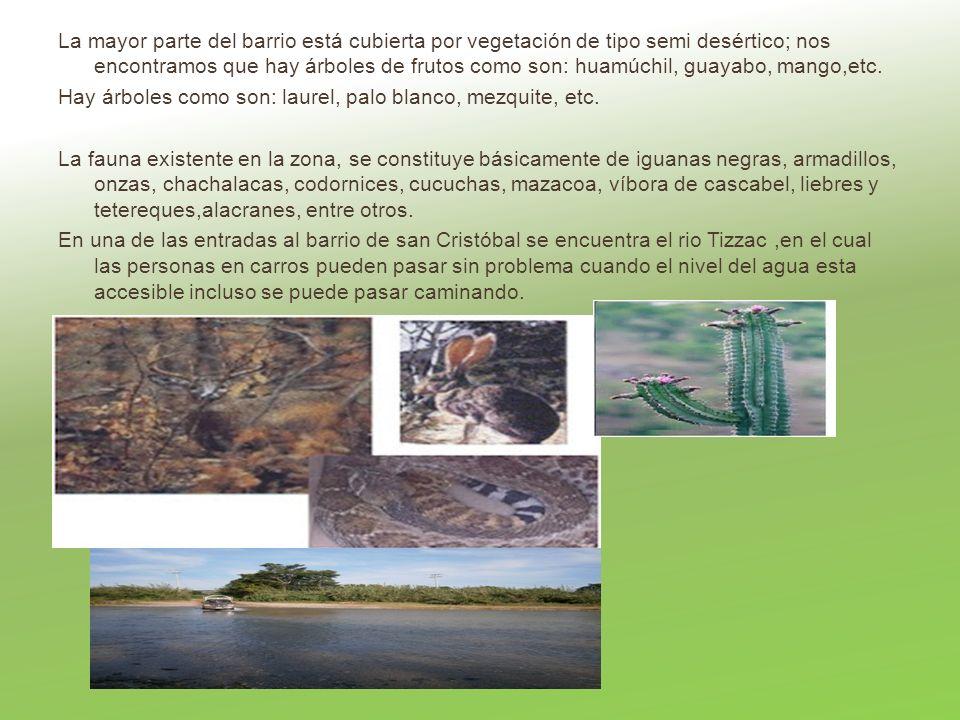 La mayor parte del barrio está cubierta por vegetación de tipo semi desértico; nos encontramos que hay árboles de frutos como son: huamúchil, guayabo, mango,etc.