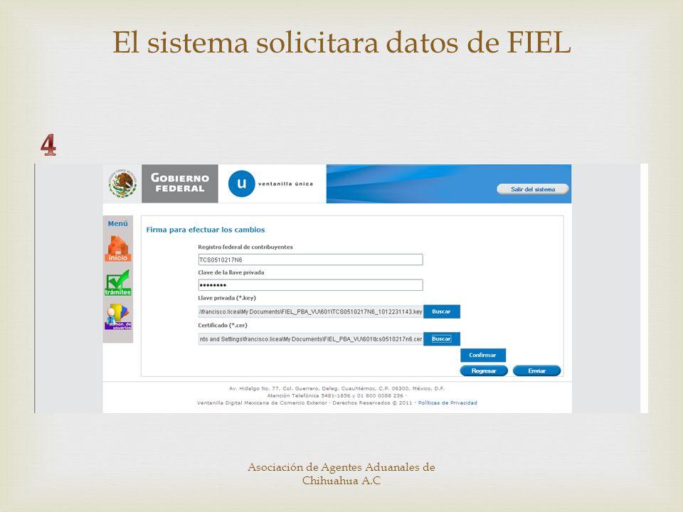 El sistema solicitara datos de FIEL