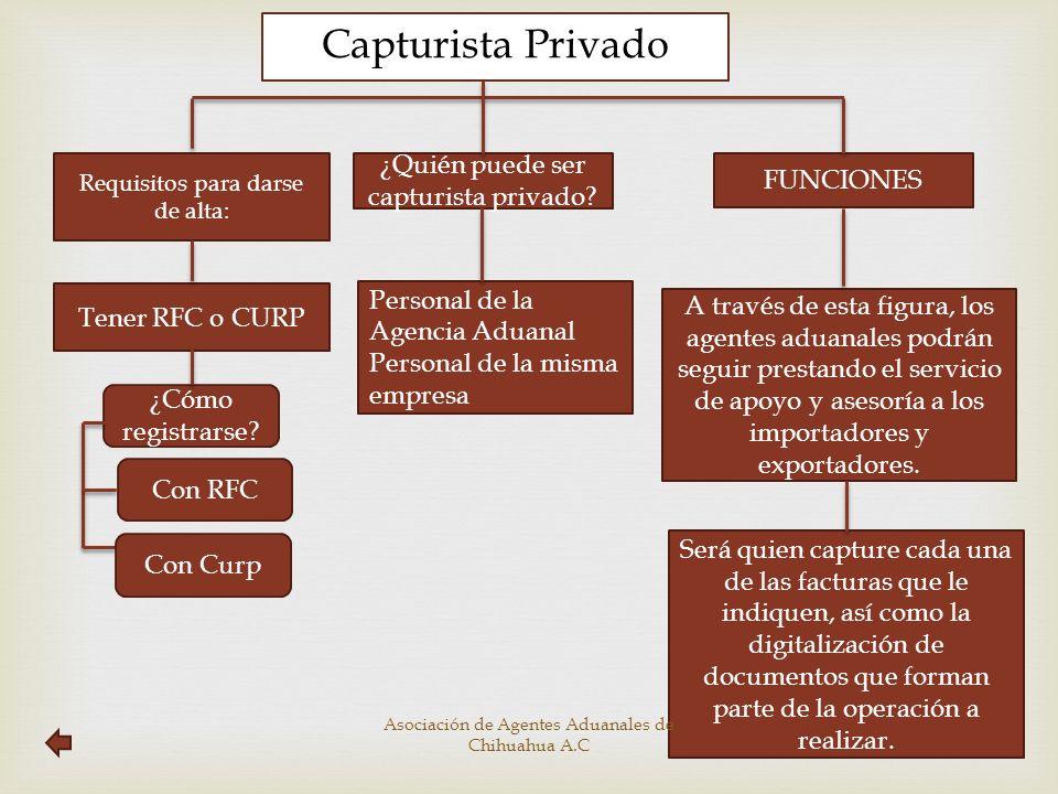 Capturista Privado ¿Quién puede ser capturista privado FUNCIONES