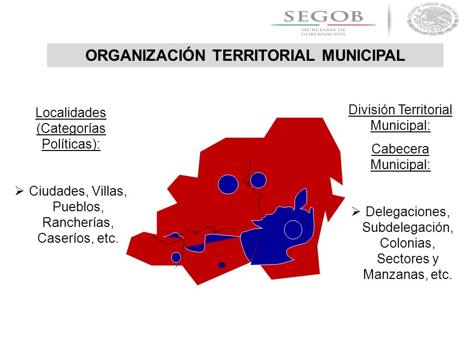 ORGANIZACIÓN TERRITORIAL MUNICIPAL