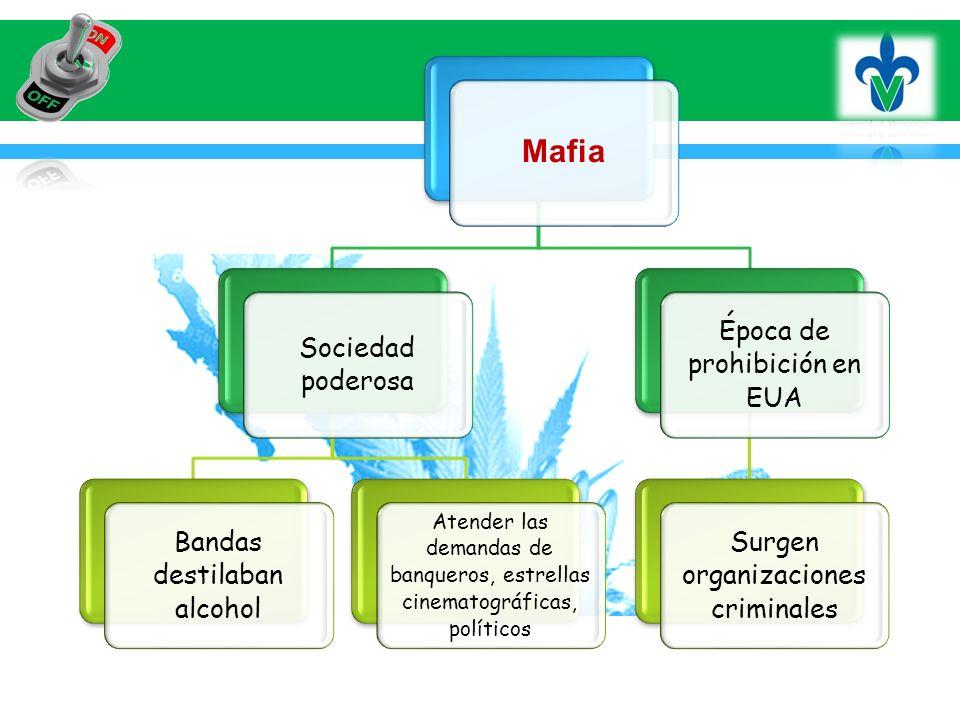 Mafia Sociedad poderosa Bandas destilaban alcohol