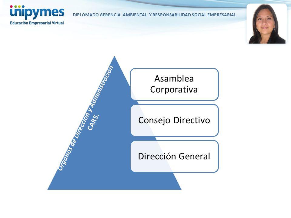 Asamblea Corporativa Consejo Directivo Dirección General