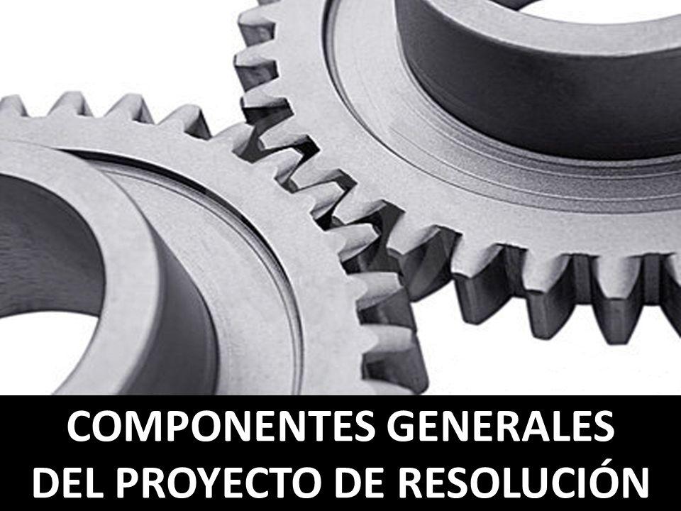 COMPONENTES GENERALES DEL PROYECTO DE RESOLUCIÓN